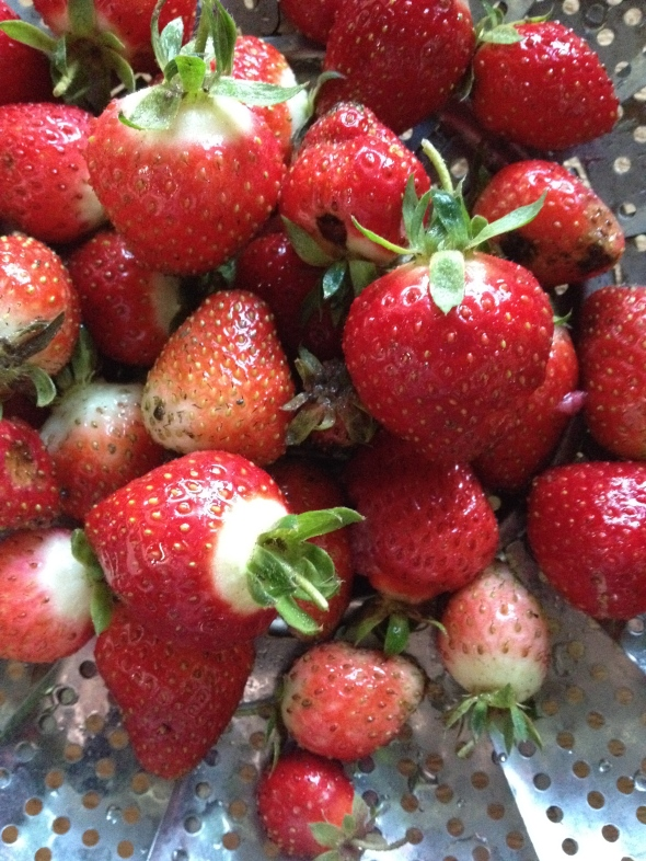 Strawberries from my garden.